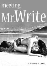 Mr Write Trilogy by Cassandra P Lewis